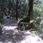 cratere-monte-rotaro2