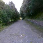 ingresso-oasi-naturalistica