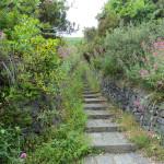 sentiero-del.grande-cratere