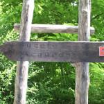 sentiero-lucertola-rossa9