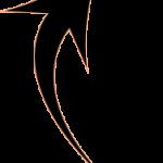 freccia-nwl